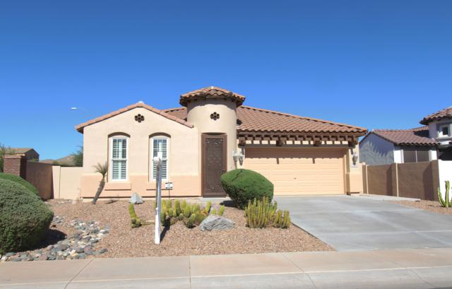 3259 S Danielson Way, Chandler, AZ 85286 (MLS #5812535) :: Lifestyle Partners Team