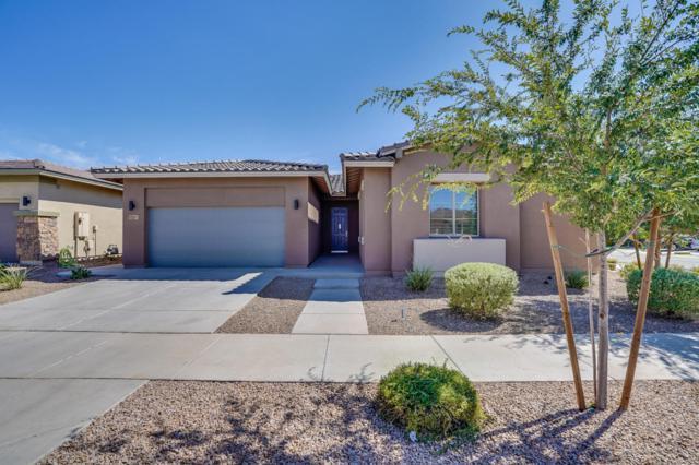 22643 E Duncan Street, Queen Creek, AZ 85142 (MLS #5812549) :: The Garcia Group @ My Home Group