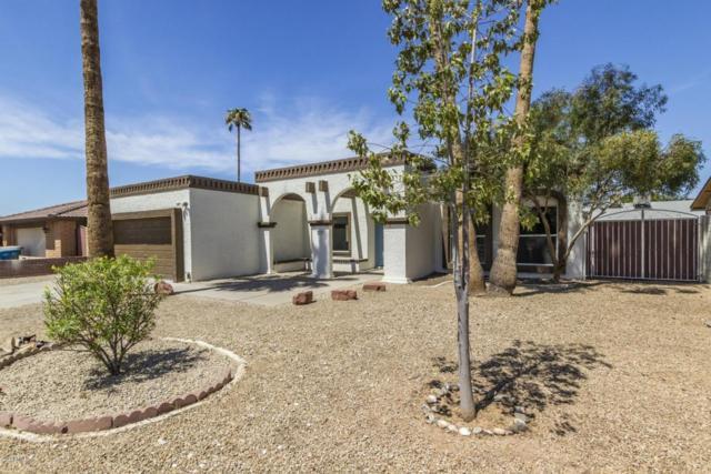 3926 W Mercer Lane, Phoenix, AZ 85029 (MLS #5812994) :: The W Group