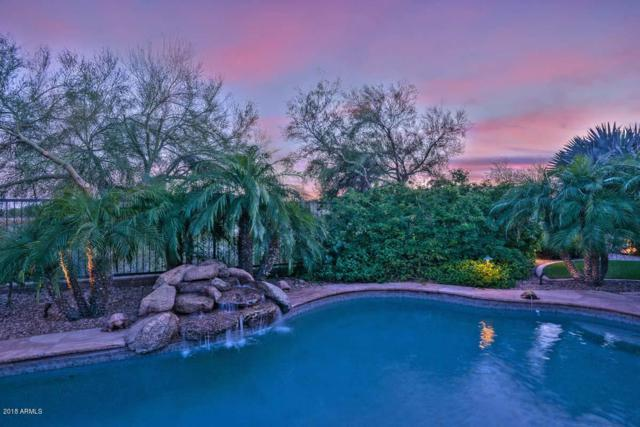 12503 W Red Hawk Drive, Peoria, AZ 85383 (MLS #5813046) :: Scott Gaertner Group