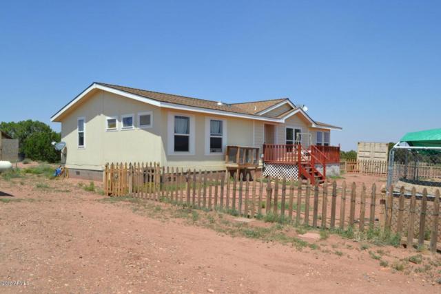 4674 Moon Rise Road, Snowflake, AZ 85937 (MLS #5813049) :: CC & Co. Real Estate Team