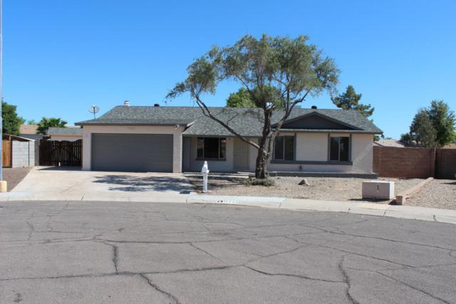 11445 N 40TH Avenue, Phoenix, AZ 85029 (MLS #5813080) :: Keller Williams Realty Phoenix
