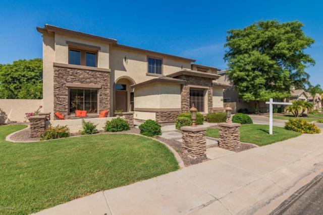 3866 E Ravenswood Drive, Gilbert, AZ 85298 (MLS #5814193) :: Occasio Realty