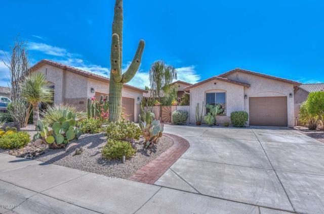 5911 W Hedgehog Place, Phoenix, AZ 85083 (MLS #5814292) :: Team Wilson Real Estate