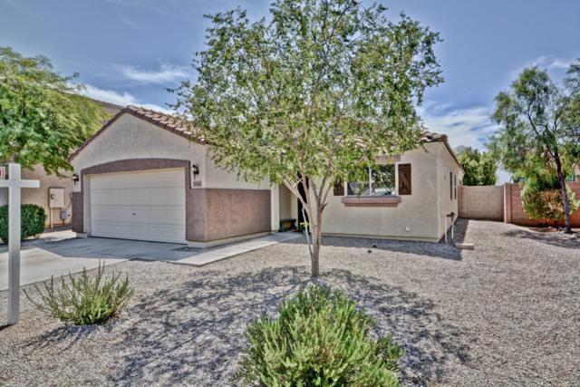 12041 W Salter Drive, Sun City, AZ 85373 (MLS #5814338) :: Arizona Best Real Estate