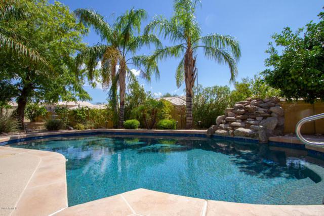 21277 N 66TH Lane, Glendale, AZ 85308 (MLS #5814661) :: Keller Williams Realty Phoenix