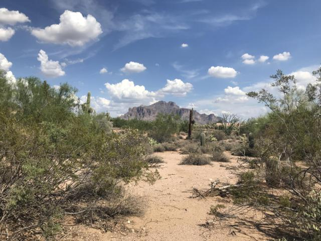 00 E Saddle Butte Street, Apache Junction, AZ 85119 (MLS #5814979) :: Openshaw Real Estate Group in partnership with The Jesse Herfel Real Estate Group
