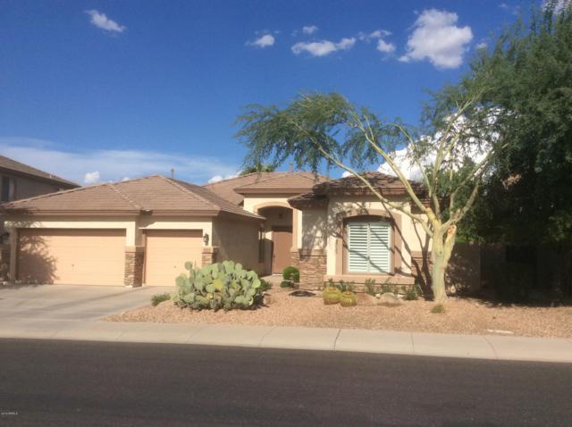 6853 S Rachael Way, Gilbert, AZ 85298 (MLS #5815255) :: Revelation Real Estate