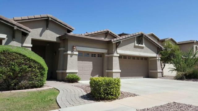 444 W Seagull Drive, Chandler, AZ 85286 (MLS #5815297) :: The W Group