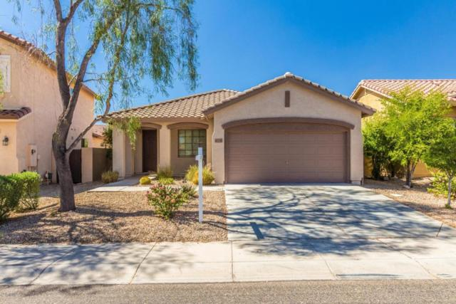 43238 N Heavenly Way, Phoenix, AZ 85086 (MLS #5815351) :: The Jesse Herfel Real Estate Group