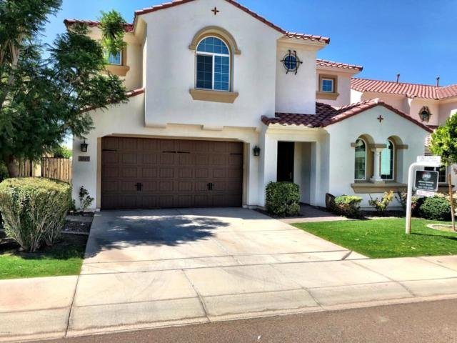 2307 W Sunrise Place, Chandler, AZ 85248 (MLS #5815460) :: Revelation Real Estate