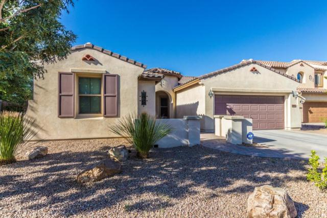 986 E Doral Avenue, Gilbert, AZ 85297 (MLS #5815519) :: The W Group