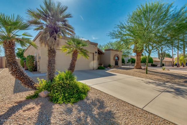 19231 N 92ND Avenue, Peoria, AZ 85382 (MLS #5815756) :: The Daniel Montez Real Estate Group