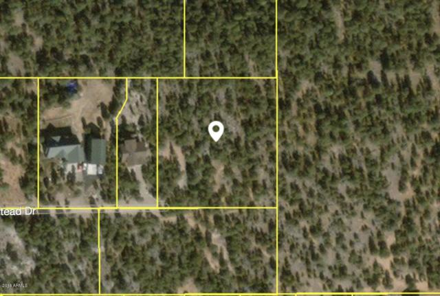 3226 Trailblazer Drive, Overgaard, AZ 85933 (MLS #5815785) :: Brett Tanner Home Selling Team