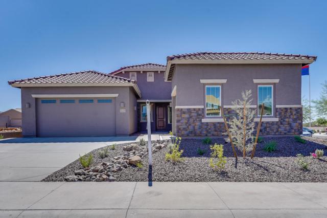 10605 W Bronco Trail, Peoria, AZ 85383 (MLS #5815787) :: The Wehner Group