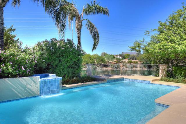 10086 E Cochise Drive, Scottsdale, AZ 85258 (MLS #5815800) :: RE/MAX Excalibur