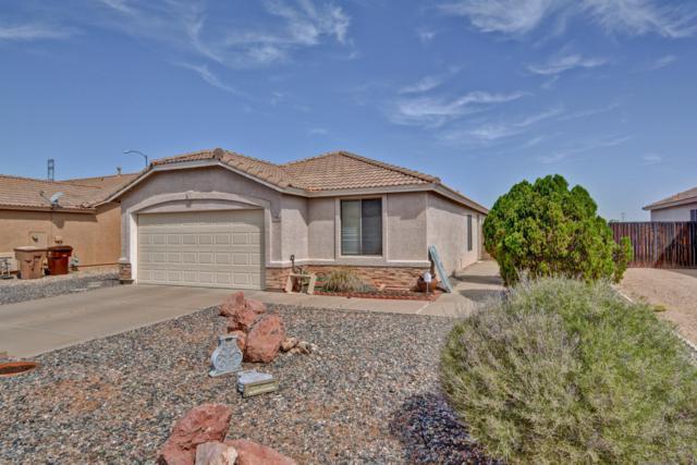 10790 W Donald Drive, Sun City, AZ 85373 (MLS #5816733) :: Team Wilson Real Estate