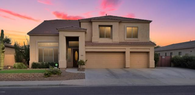 6561 S Salt Cedar Place, Chandler, AZ 85249 (MLS #5816814) :: The Garcia Group