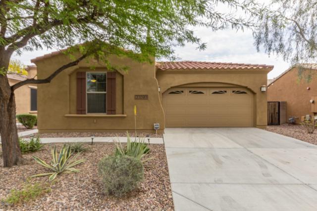 31091 N 136TH Lane, Peoria, AZ 85383 (MLS #5816836) :: The Garcia Group