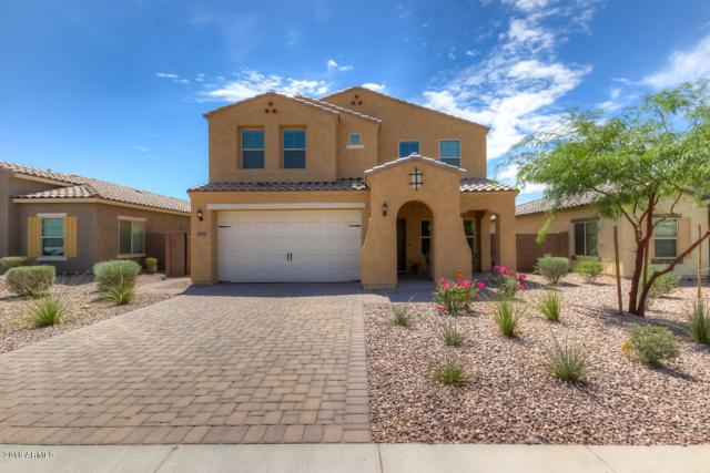 2751 E Mews Road, Gilbert, AZ 85298 (MLS #5816983) :: The Jesse Herfel Real Estate Group