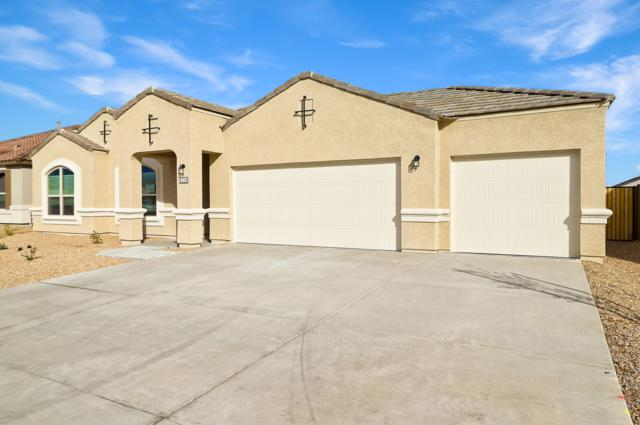 26033 N 137TH Lane, Peoria, AZ 85383 (MLS #5817997) :: The Results Group