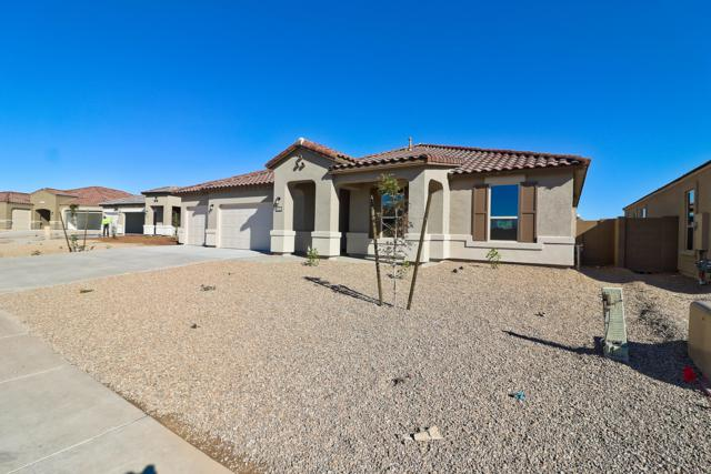 26105 N 137TH Lane, Peoria, AZ 85383 (MLS #5817999) :: The Results Group