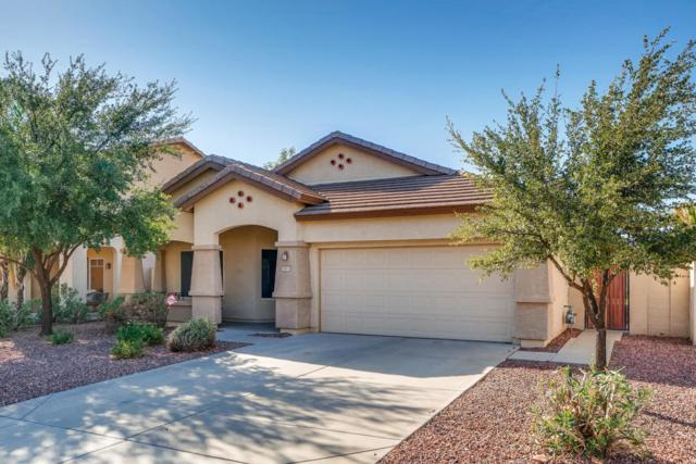7673 W Louise Drive, Peoria, AZ 85383 (MLS #5818306) :: Yost Realty Group at RE/MAX Casa Grande