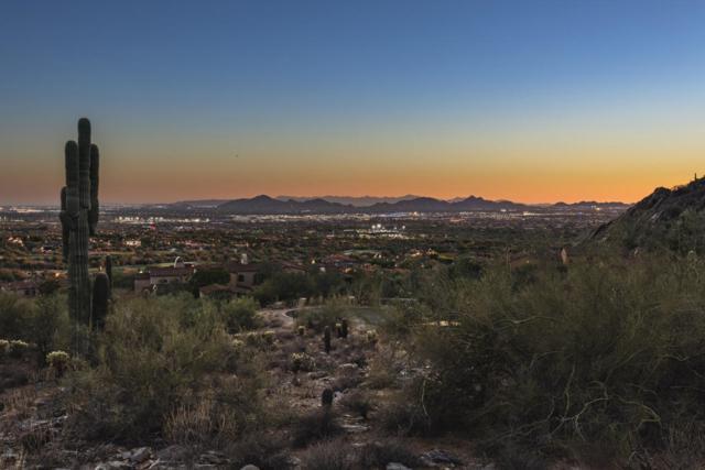 21009 N 104TH Street, Scottsdale, AZ 85255 (MLS #5818313) :: The W Group