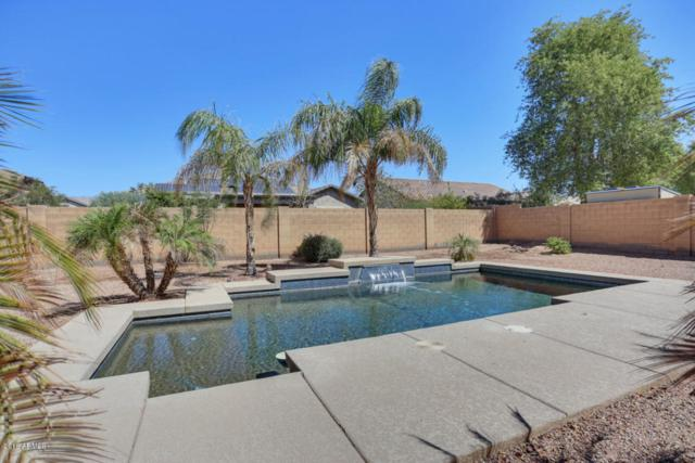 16748 W Durango Street, Goodyear, AZ 85338 (MLS #5818529) :: The Jesse Herfel Real Estate Group