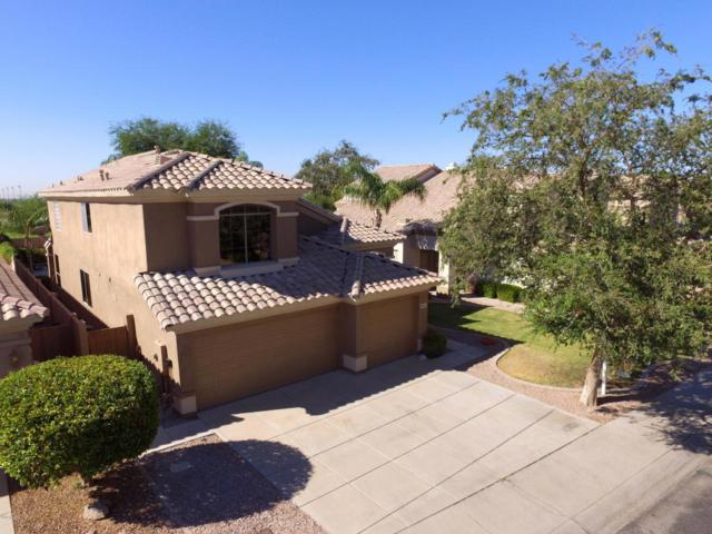 8115 E Michelle Drive, Scottsdale, AZ 85255 (MLS #5818589) :: Santizo Realty Group
