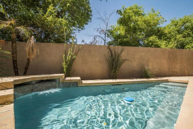 6982 N 83RD Street, Scottsdale, AZ 85250 (MLS #5818652) :: The Garcia Group