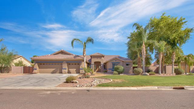 11714 E Navajo Drive, Chandler, AZ 85249 (MLS #5818668) :: Keller Williams Realty Phoenix