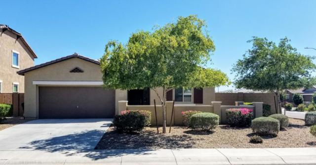 12225 W Chase Lane, Avondale, AZ 85323 (MLS #5818688) :: The Results Group