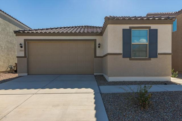 37022 N Yellowstone Drive, San Tan Valley, AZ 85140 (MLS #5818756) :: Kortright Group - West USA Realty