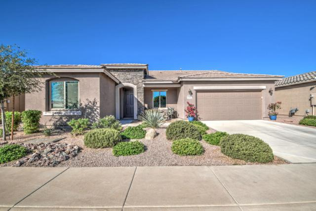 19902 N Pinochle Lane, Maricopa, AZ 85138 (MLS #5818894) :: Sibbach Team - Realty One Group