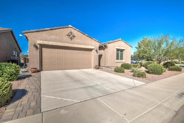 19926 N Pinochle Lane, Maricopa, AZ 85138 (MLS #5818896) :: Sibbach Team - Realty One Group