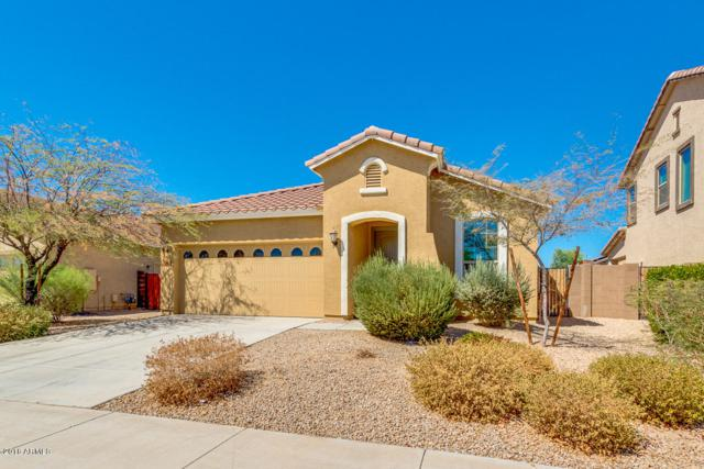 16954 W Mohave Street, Goodyear, AZ 85338 (MLS #5819003) :: The Everest Team at My Home Group
