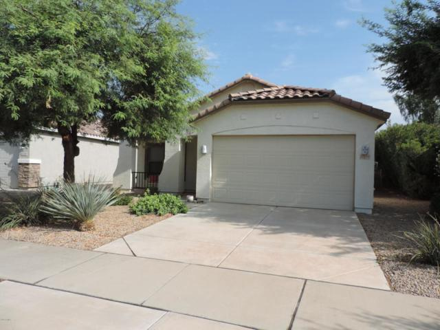 22110 E Via Del Palo, Queen Creek, AZ 85142 (MLS #5819108) :: The Everest Team at My Home Group