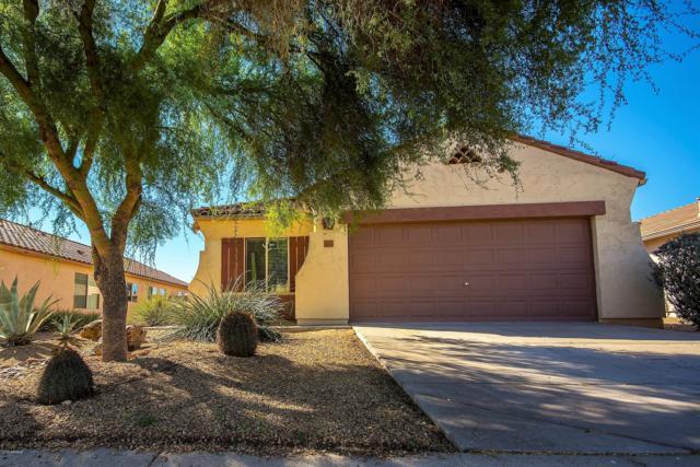 10559 E Hillside Mine Court, Gold Canyon, AZ 85118 (MLS #5819591) :: The Kenny Klaus Team