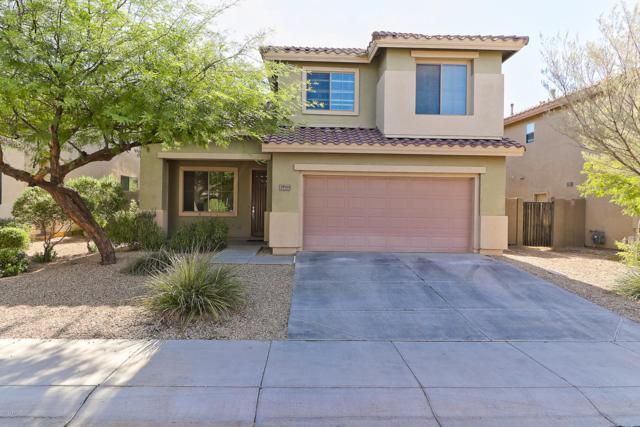 39919 N River Bend Road, Phoenix, AZ 85086 (MLS #5819754) :: Lucido Agency
