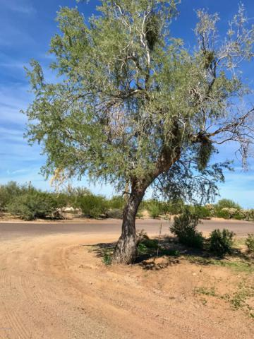 0 E Roca Road, Florence, AZ 85132 (MLS #5820206) :: The Daniel Montez Real Estate Group