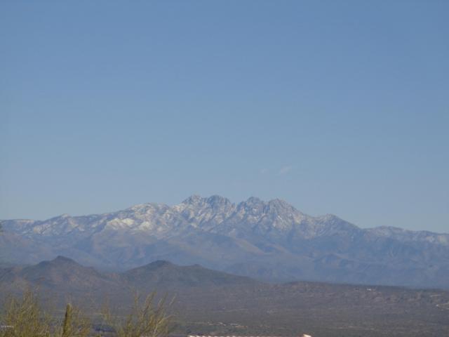 15755 E Tumbleweed Drive, Fountain Hills, AZ 85268 (MLS #5820378) :: Yost Realty Group at RE/MAX Casa Grande