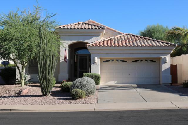 6604 E Sierra Morena Street, Mesa, AZ 85215 (MLS #5820489) :: The Property Partners at eXp Realty