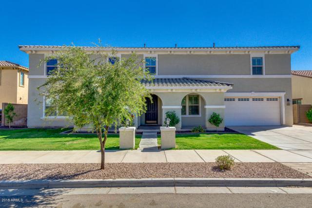 21163 E Via De Arboles, Queen Creek, AZ 85142 (MLS #5820529) :: Arizona 1 Real Estate Team