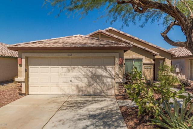 15862 W Morning Glory Street, Goodyear, AZ 85338 (MLS #5820747) :: The Garcia Group @ My Home Group