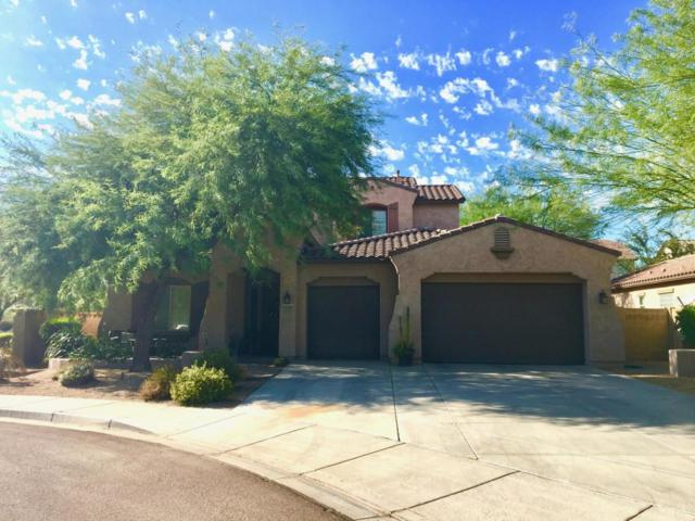 8818 W Buckhorn Trail, Peoria, AZ 85383 (MLS #5820861) :: The Laughton Team