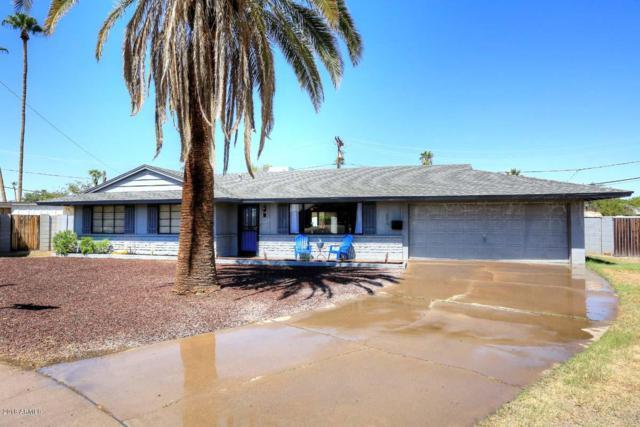 6014 N 21ST Drive, Phoenix, AZ 85015 (MLS #5820916) :: Occasio Realty