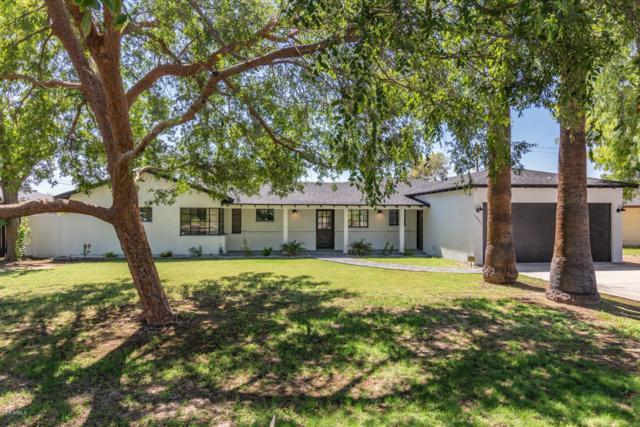 1251 W Solano Drive, Phoenix, AZ 85013 (MLS #5820995) :: Lifestyle Partners Team