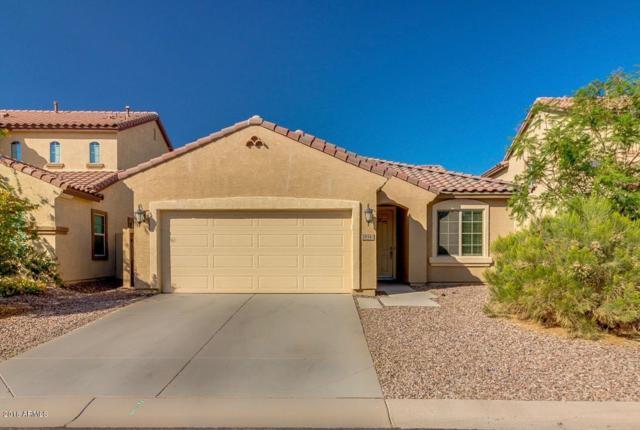28342 N Cactus Flower Circle, San Tan Valley, AZ 85143 (MLS #5821015) :: Arizona 1 Real Estate Team
