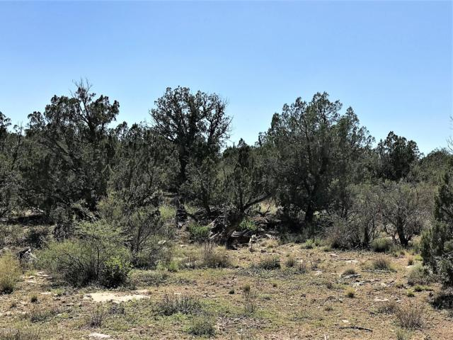 00C Prescott Ranch Road, Paulden, AZ 86334 (MLS #5821022) :: Dave Fernandez Team | HomeSmart